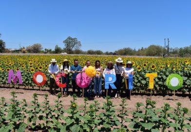 Bienvenidos todos a Los Girasoles de Primavera en Mocorito